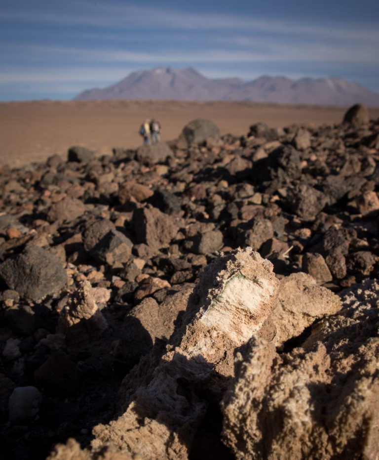 In Northern Chile's Atacama Desert, one of the driest places on Earth, microorganisms live beneath thin layers of rock to gain some protection from harsh winds and solar radiation. Water, although limited, is stored as a structural element within these rocks. Jocelyne DiRuggiero / Johns Hopkins University