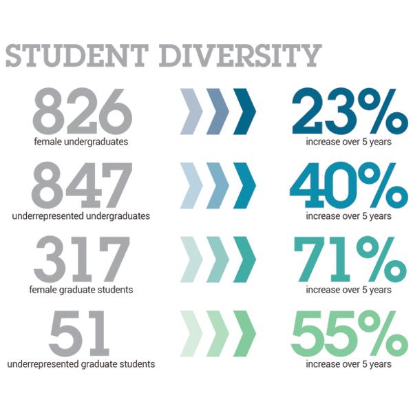 2016 Student Diversity