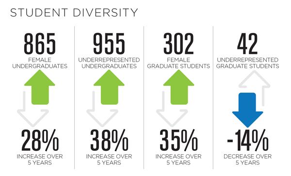 2016-17 Student Diversity