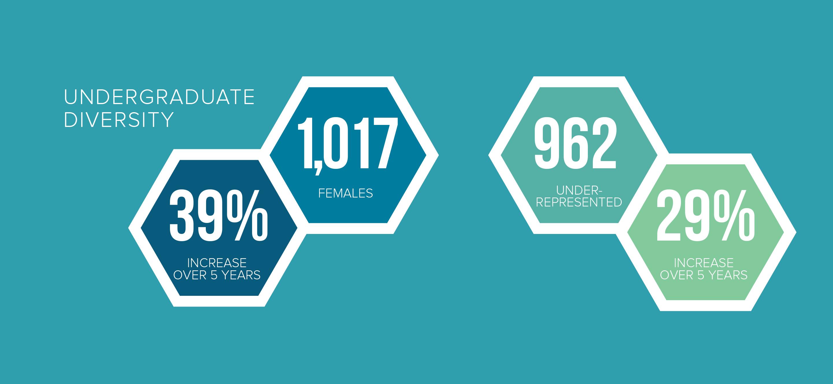 2019 Undergraduate Diversity