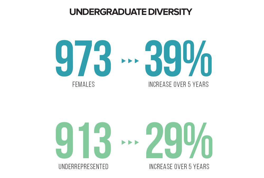 2019-20 Undergraduate Diversity