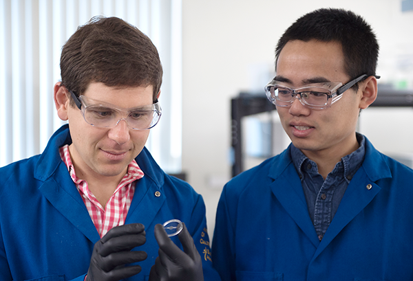 UCI engineering professor Alon Gorodetsky and doctoral student Chengyi Xu have achieved a breakthrough, inventing a stretchy new material modeled after both squid skin and Hollywood dinosaurs with remarkable properties. Steve Zylius / UCI