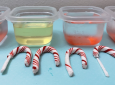 "Participants tested different solutions (vinegar, oil, room temperature water and warm water) in the ""Disappearing Candy Canes,"" workshop to observe variations in dissolution."
