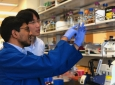 Arjun Ravikumar, who recently earned his Ph.D. in biomedical engineering at UCI, and his advisor, Chang Liu, UCI assistant professor of biomedical engineering, collaborated on a study published in Cell that details a new method for simplifying and acceler