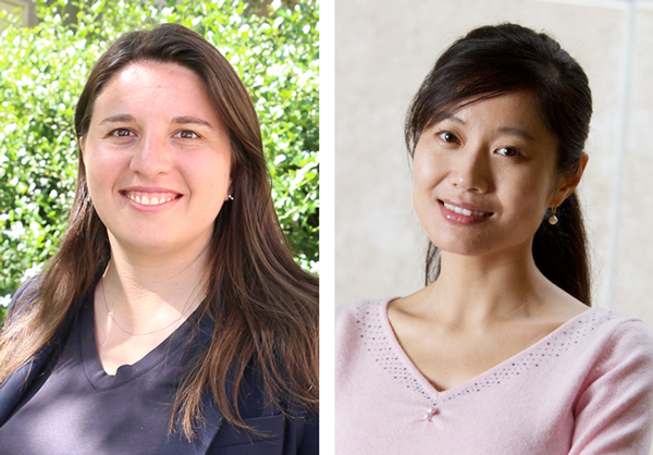 Iryna Zenyuk (left) and Mo Li are working together on an NSF-funded project to assess the feasibility of a lower-temperature, renewable cement manufacturing process.